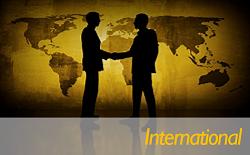 Consulenza Internazionale - ENG