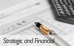 Consulenza Strategica e Finanziaria - ENG